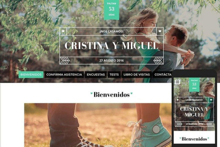 8 buenas razones para crear su web de Matrimonios.cl