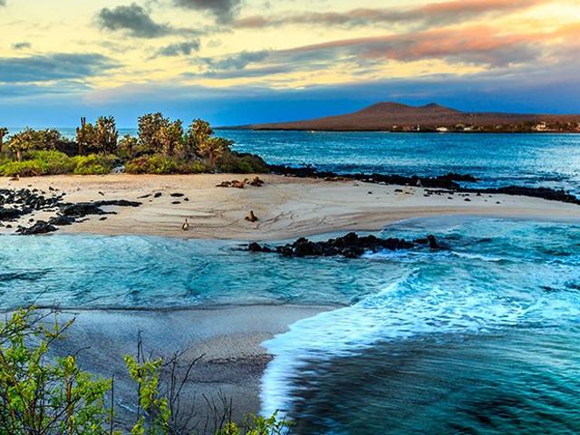 Conozcan las maravillas de las Islas Galápagos en su luna de miel