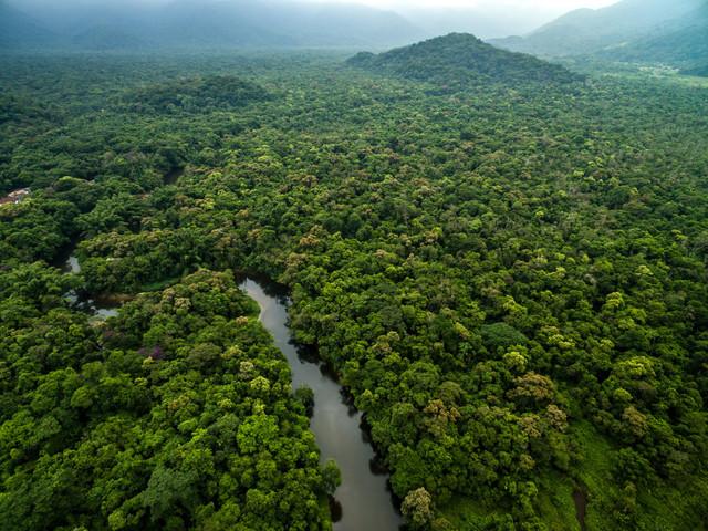 ¿Por qué explorar la Selva Amazónica Peruana en su luna de miel?