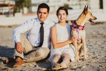 ¿Cómo vestir a sus mascotas para el matrimonio?