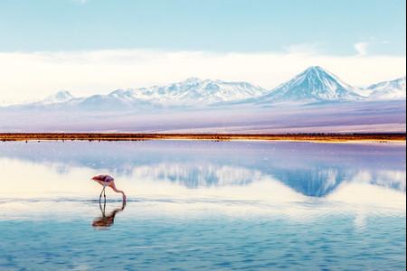 Luna de miel en San Pedro de Atacama: amor por el desierto