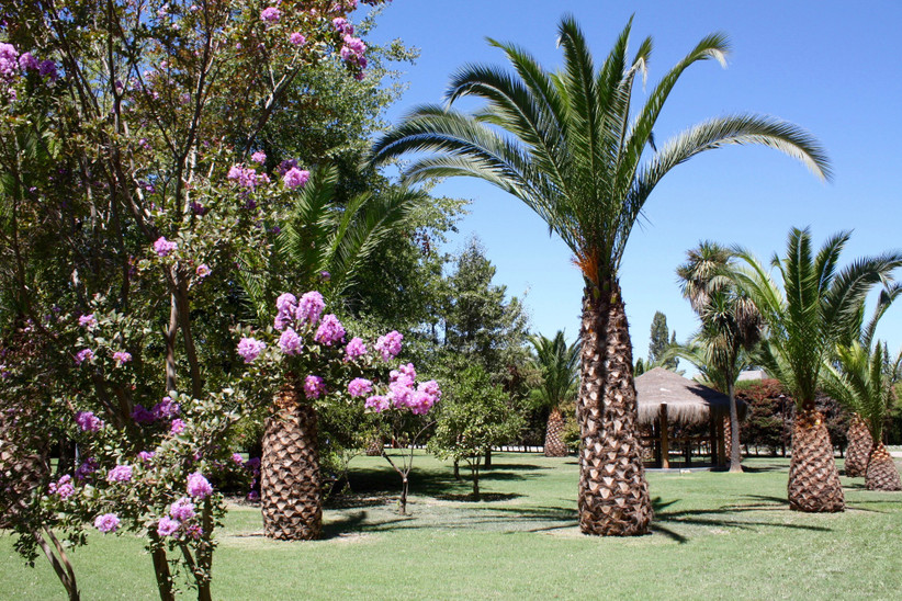 Las Secoyas - Zona exterior Jardines