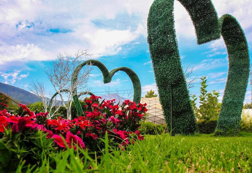 Dejando Huella -Detalles jardin