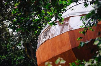 Glamping: naturaleza y lujo en su luna de miel