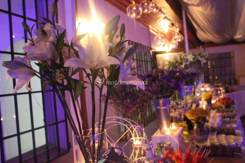 Lilium blancos