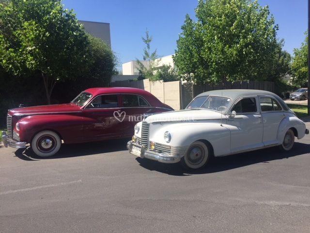 Mis Packard Blanco o rojo