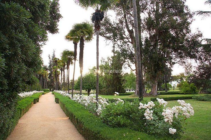 Vista parque