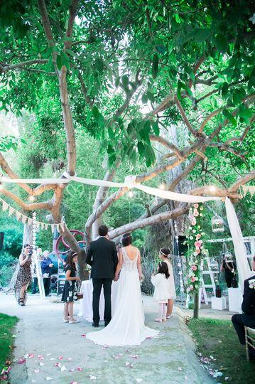 Ceremonia bajo el árbol