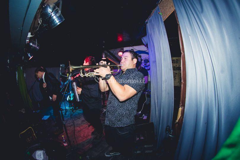 Trompetista Pa' Que Baile