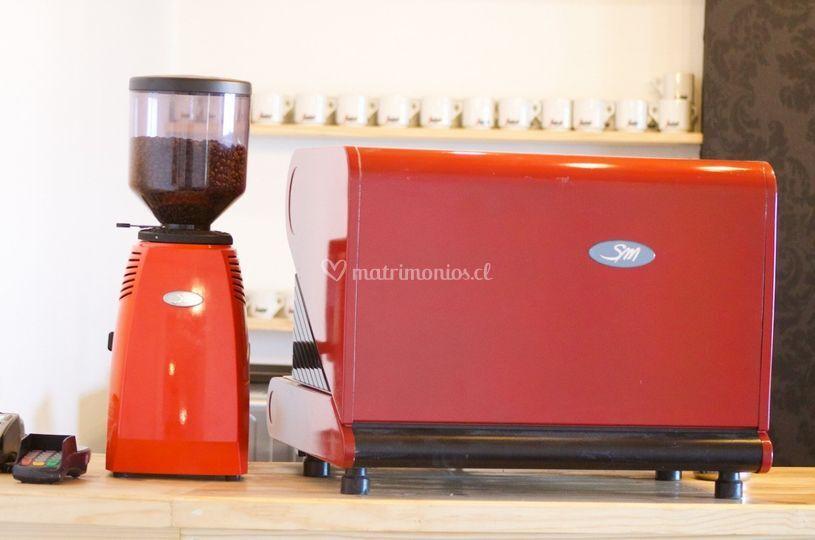 Café en grano de primer nivel