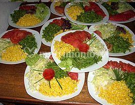 Platos de ensalada mixta