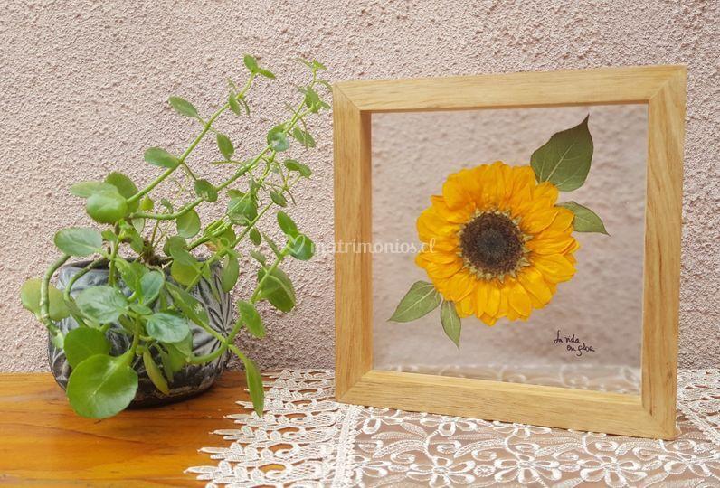 Flores en doble vidrio