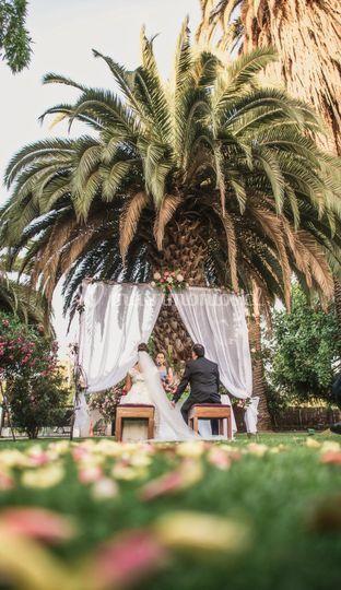 Ceremonia en palmeras