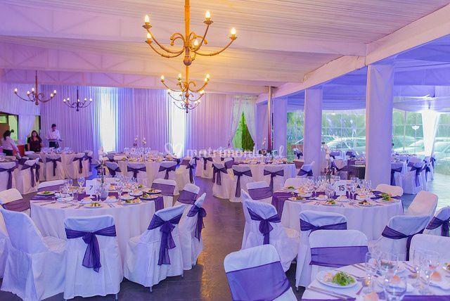 Salón en lila