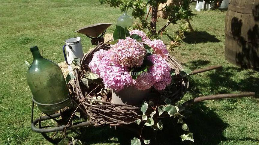 Flores de estación
