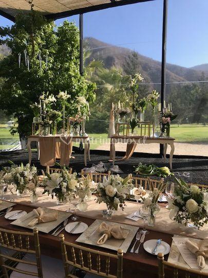 Matrimonio Valle del Elqui