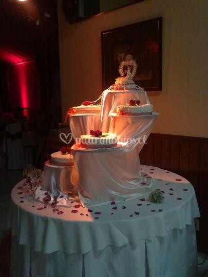 Teñido de torta