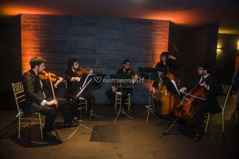 Quinteto en Alto San Francisco