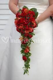 Cascadas de rosas