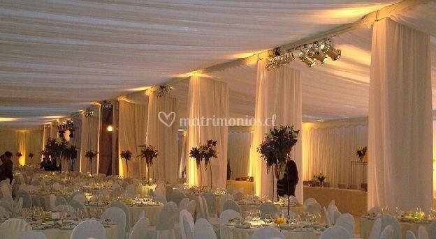 Fiesta de la boda