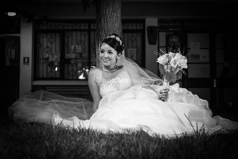 Seisón de novia