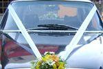 Auto para matrimonio de Florer�a Las Violetas
