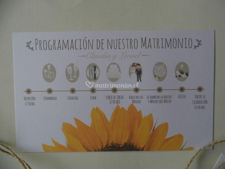 Programa del matrimonio