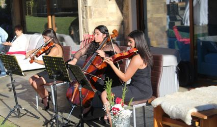 Grupo Musical Auftakt