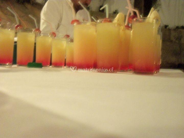 Deliciosas bebidas