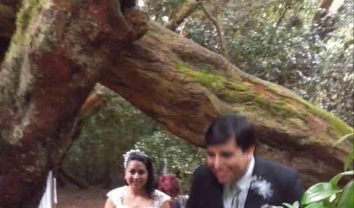 Recepciones de matrimonio