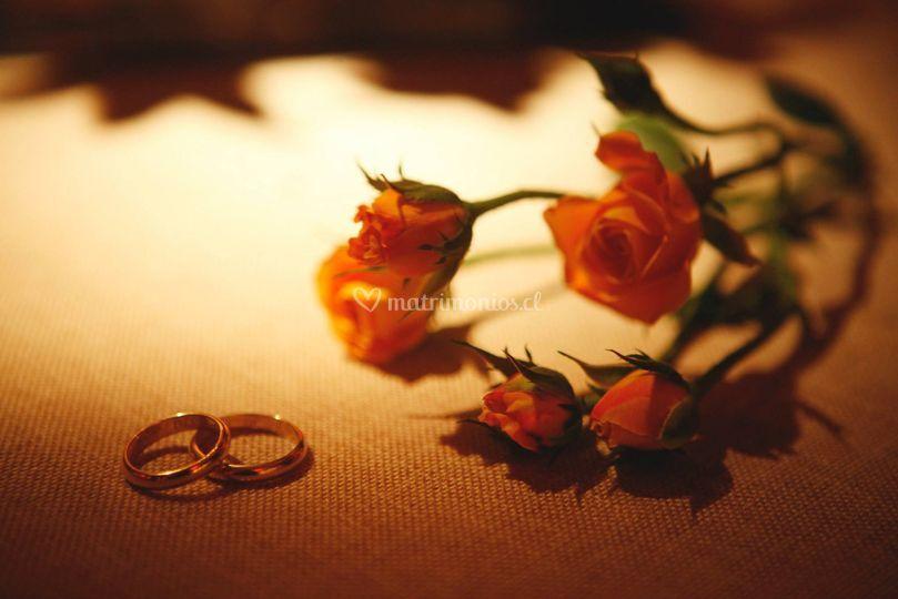 Videos de Matrimonio
