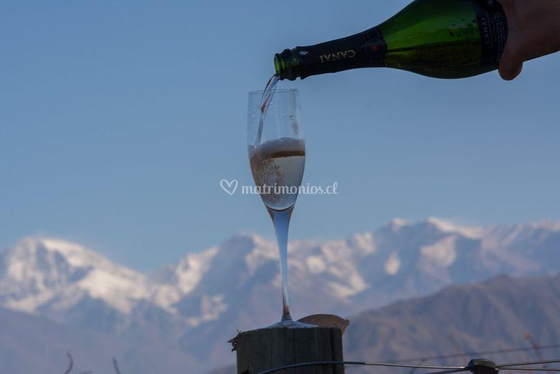 Cordillera y vino