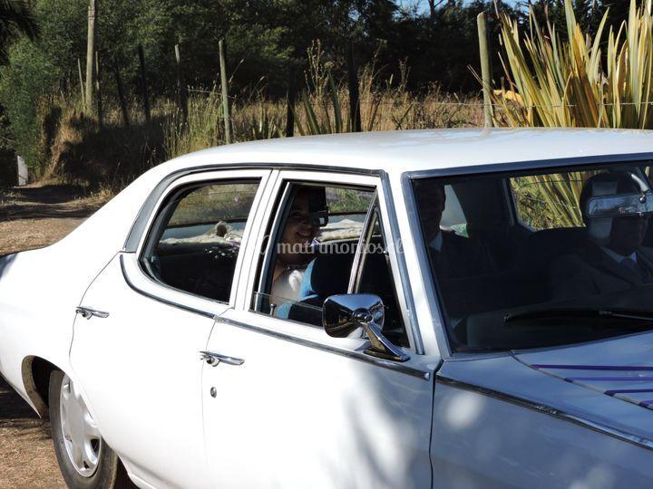 Automóvil en color blanco