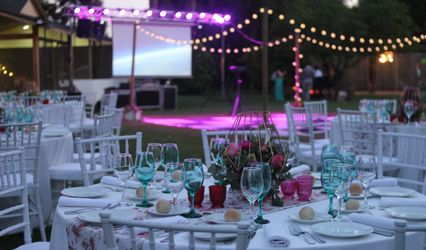 Butterfly Banquetes