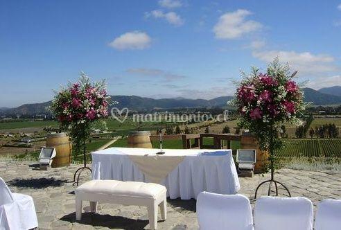 Ceremonia en el viñedo