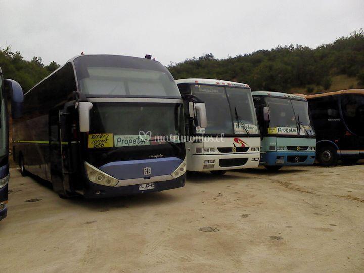 Buses Propetur en la Curunina,
