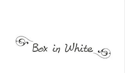 Box in White 1