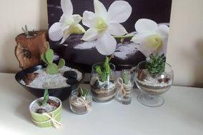 Garden isidora