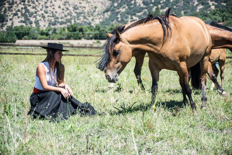 LoPirque es campo y caballos