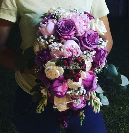 Flores para Augusta