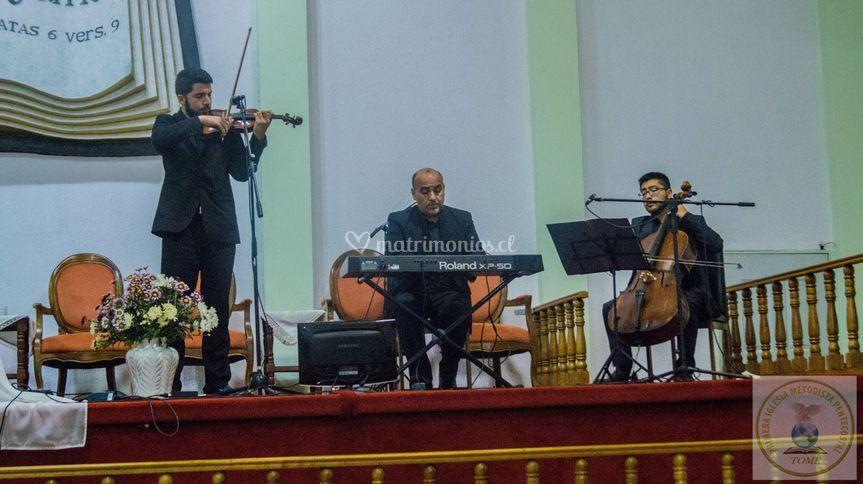 Trio ad libitum, música