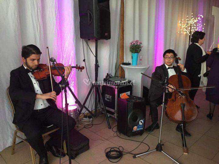 Trio ad libitum, cóctel
