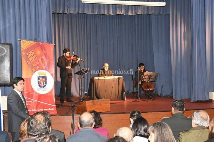 Trio ad libitum, municipio