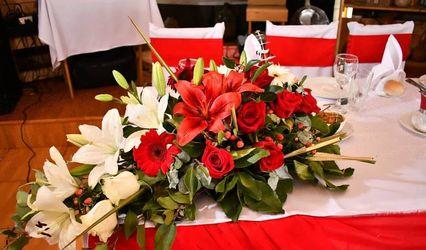 Flores Quillota 1