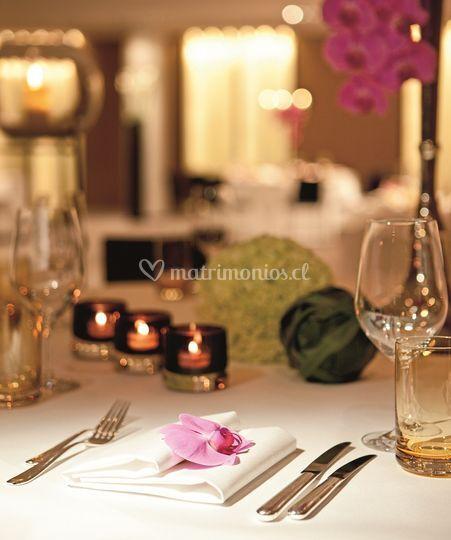 Setup de mesa