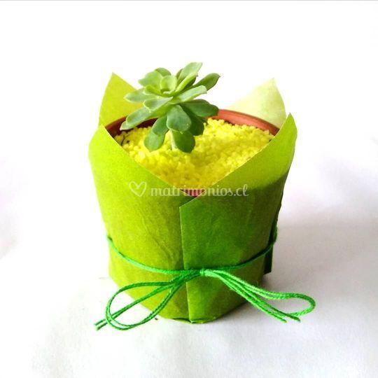 Maceta plástica verde