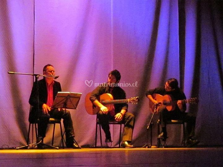 Músicos en vivo