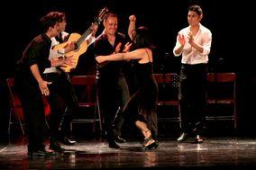 Escuela de Flamenco Erika Fritz