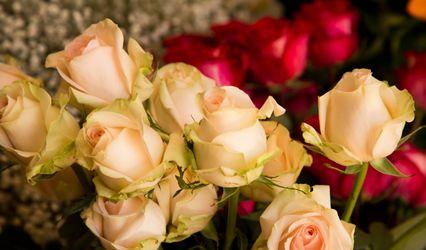 La Rosa Florería 1