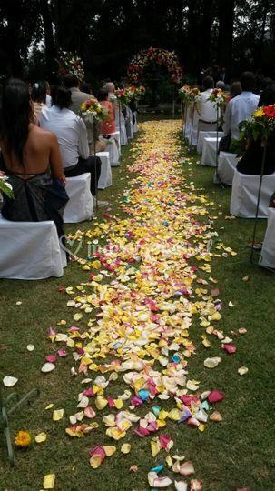 Caminito de Flores
